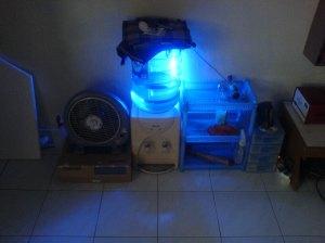 lampu neon biru baru